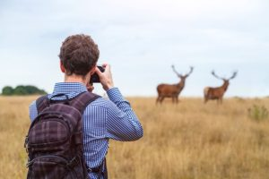 How to Be a Nature Photographer in Canada