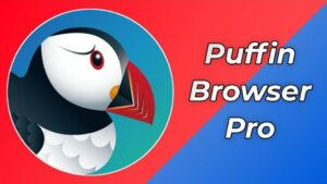 Puffin Browser Pro APK Download (MOD, Pro Unlocked) for Android / iOS